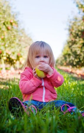 яблочный спас ребенок ест яблоко